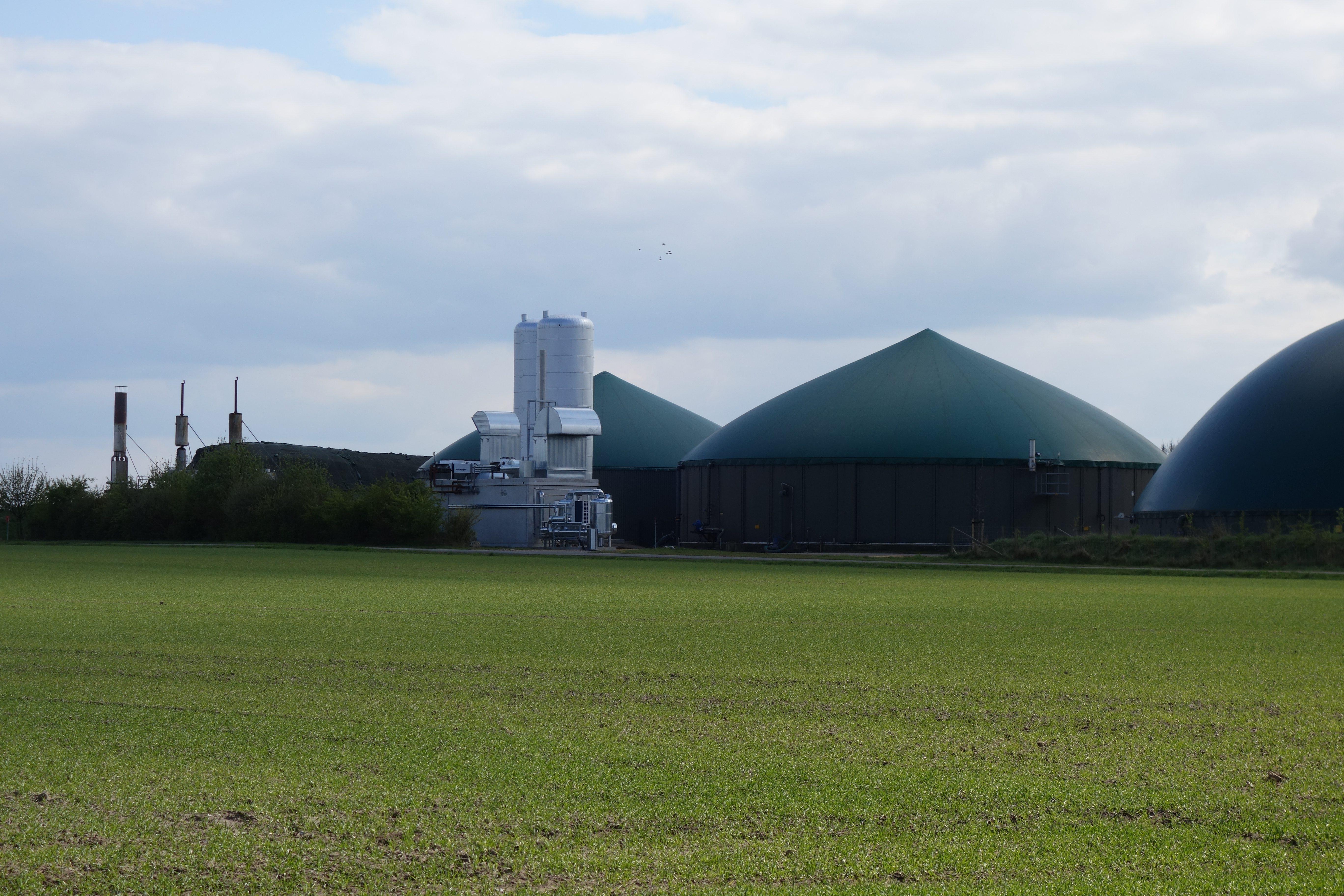 http://www.eeggmbh.com/wp-content/uploads/panorama/biomassekraftwerk_tour.htm